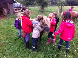 Stage à la ferme - poney