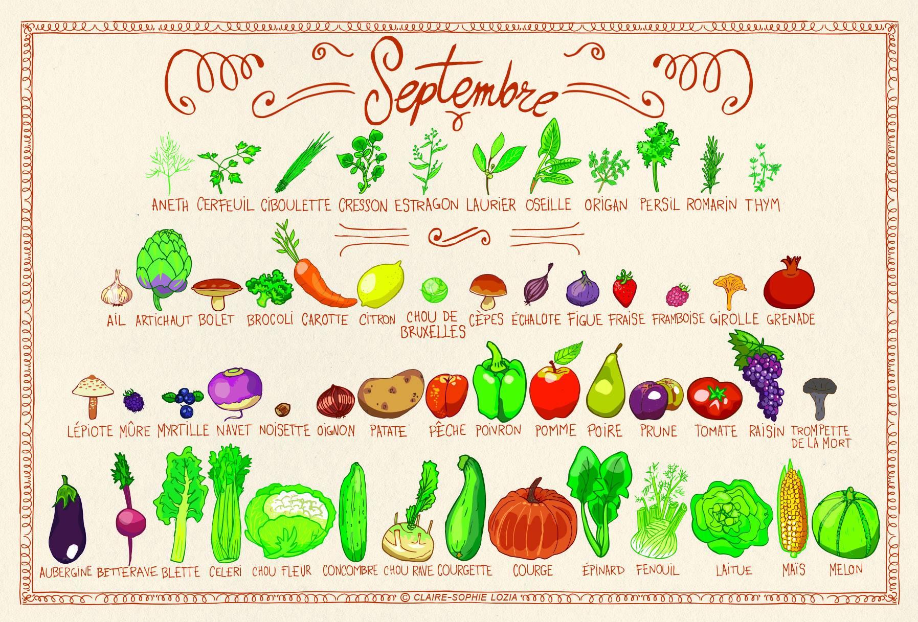 fruit et legume en l