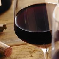 Soirée découverte sur les vins bio, en biodynamie et naturels